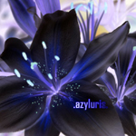 azyluris's Photo