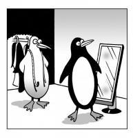 pinguinoLujo's Photo