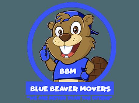 bluebeavermo's Photo