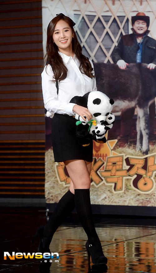 Yuri: Conferencia de prensa para nuevo programa de variedades 'Animals' 201501221417512010_1