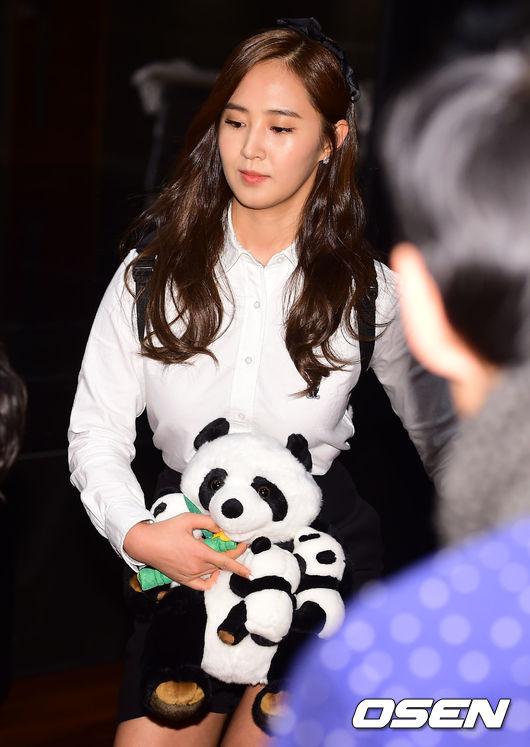 Yuri: Conferencia de prensa para nuevo programa de variedades 'Animals' 201501221420778680_54c089091c4fc