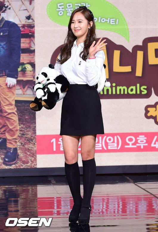 Yuri: Conferencia de prensa para nuevo programa de variedades 'Animals' 201501221447771730_54c08f43926d2