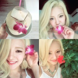 hyo its party time